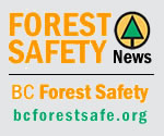 forest_safety_news_gry2.jpg